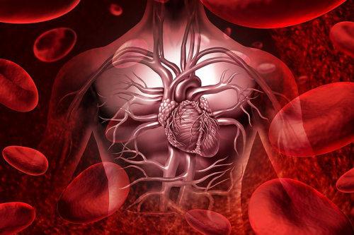 Cardiovascular Health-